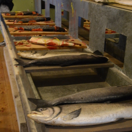 Salmon Cannery