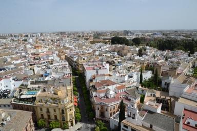 Seville (57)