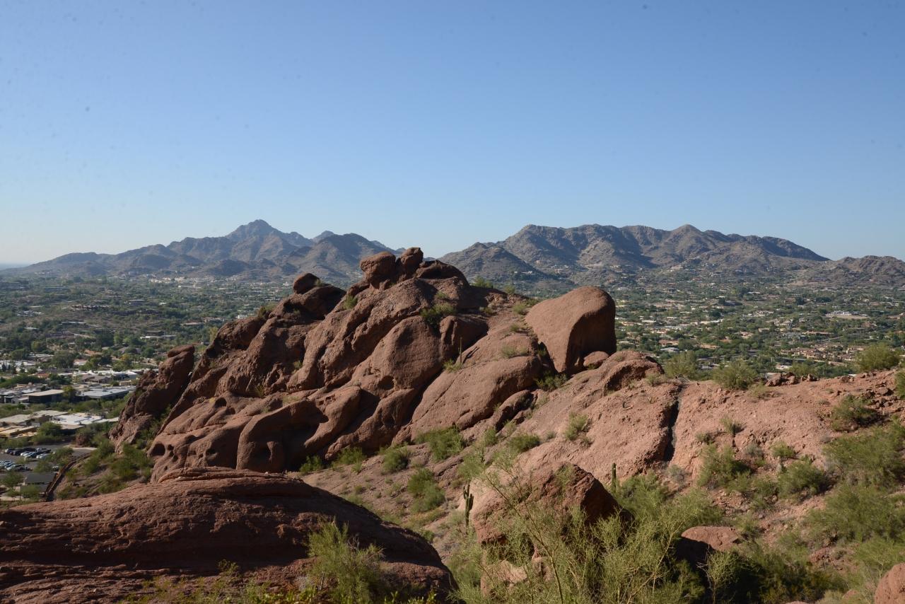 Arizona keeps calling usback